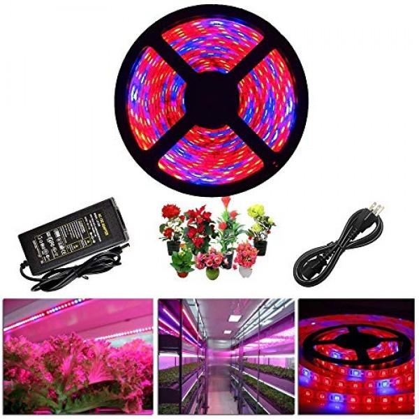 ZCPlus LED Strip Light Plant Grow Lights 16.4ft 5050 SMD Waterproo...