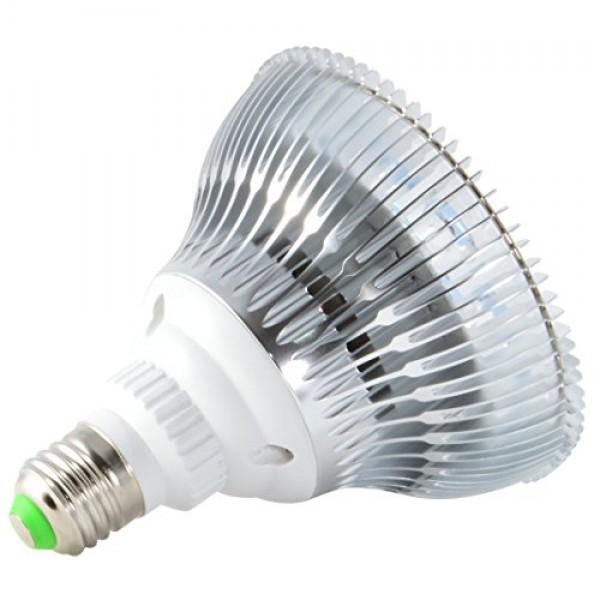 ABI LED Aquarium Light Bulb, 12W Royal Blue 450nm + Cold White 10...