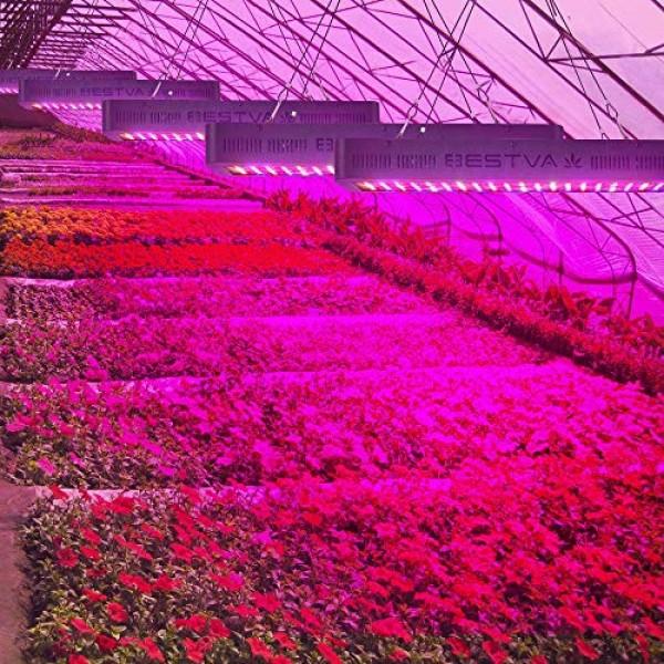 BESTVA DC Series 2000W LED Grow Light Full Spectrum Grow Lamp for ...
