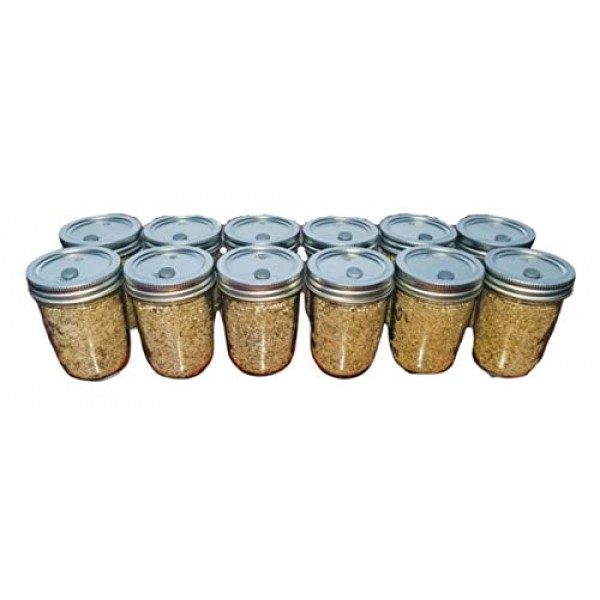 12 Jars BRF PF Tek Brown Rice Flour Mushroom Substrate - Half Pint...
