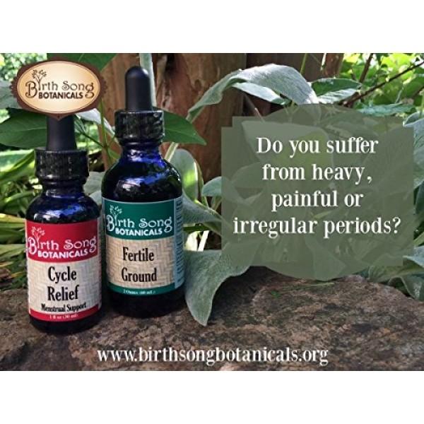 Birth Song Botanicals Fertile Ground Best Fertility Liquid Tinctur...