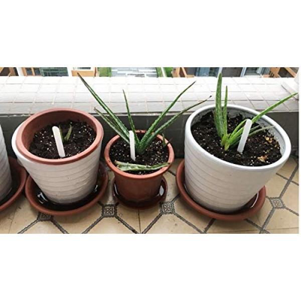 Delatanus 200PCS Plant Labels 4.7inch Plant Markers,White