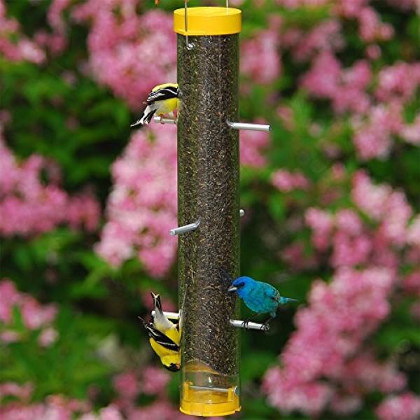 Droll Yankees Bird Feeder, Finch Feeder, Bird Lovers, Bottoms-Up, ...