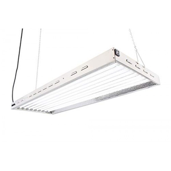 Durolux DL8048 T5 Florescent 4 Foot 8 Lamps with 6500K and 40000 L...