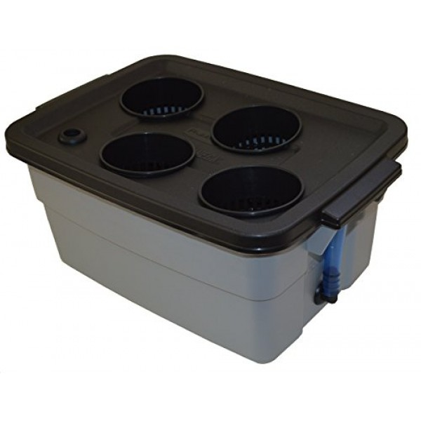 Complete Hydroponic system DWC Grow kit #3-4 by H2OtoGro