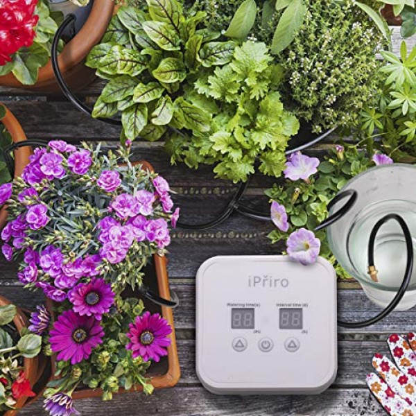iPřiro Houseplants Automatic Watering System,Automated Watering De...