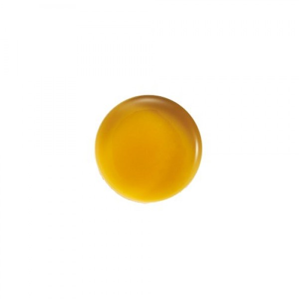 John Masters Organics - Evening Primrose Shampoo for Dry Hair - 8 oz