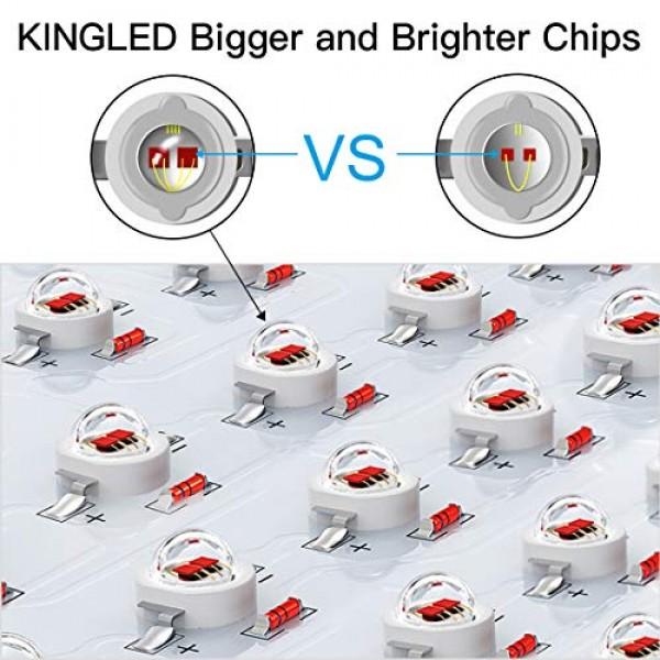 King Plus 2000W Double Chips LED Grow Light Full Spectrum for Gree...