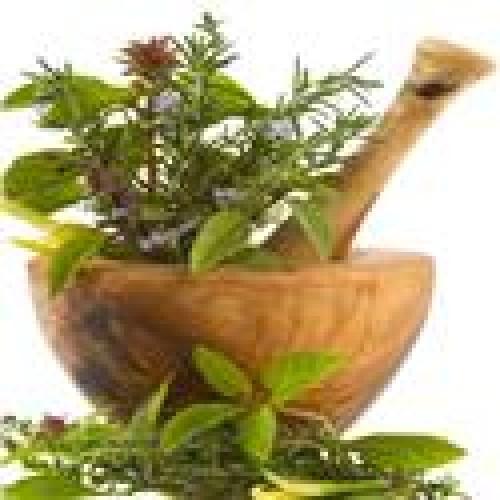 ALCAT 50 Female Herb Panel
