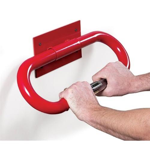 Biosig Instruments Insta-Pulse Wall Model 201