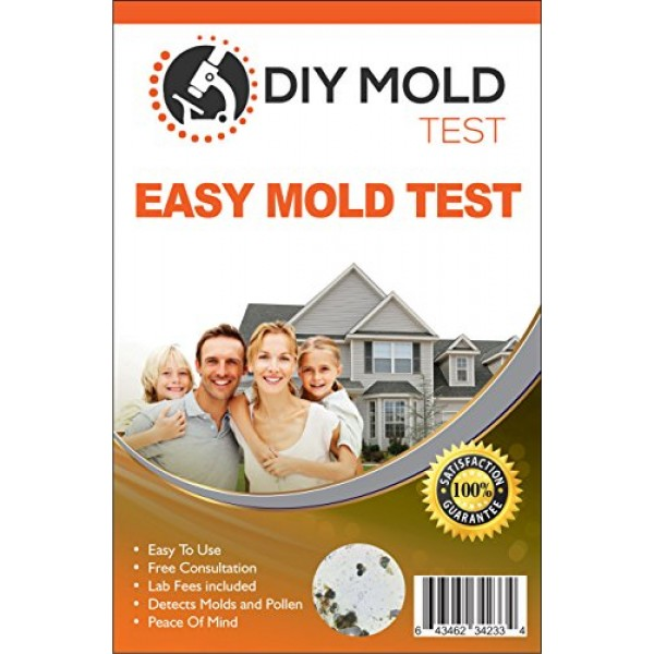 Diy Mold Test Testing Kit 3 Tests Lab Ysis And Expert
