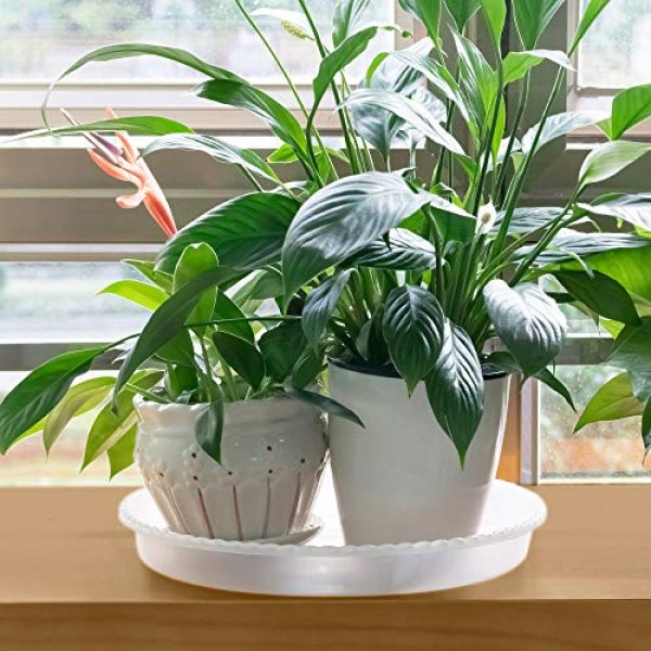 MUDEELA 6 Pack of 14 inch Plant Saucer, Durable Plastic Plant Tray...