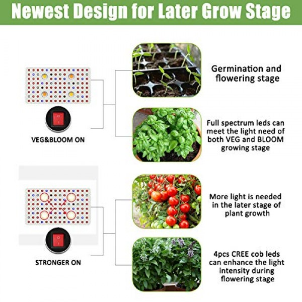Phlizon CREE Cob Series 2000W LED Plant Grow Light Full Spectrum I...