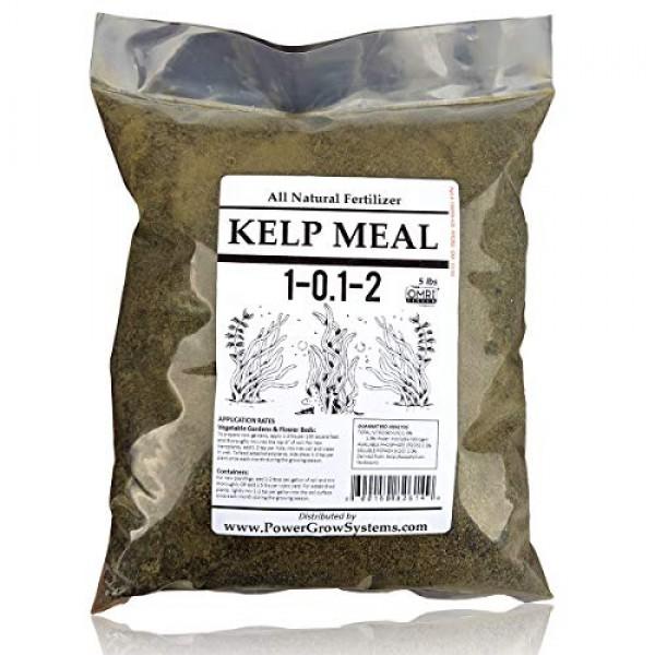 Kelp Meal - Organic Kelp Meal Natural Fertilizer 5 Pounds