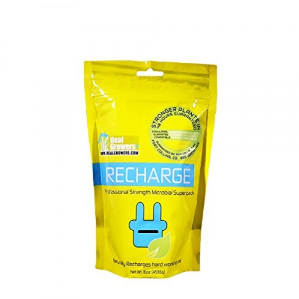 Real Growers Recharge 16oz