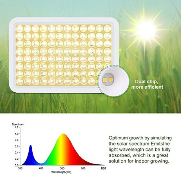 600W Grow Light, Roleadro LED Grow Light White for Indoor Plant, F...