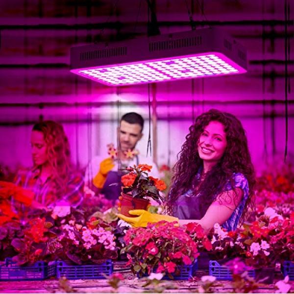 Grow Light, Roleadro 800W LED Grow Light Full Spectrum Plant Grow ...