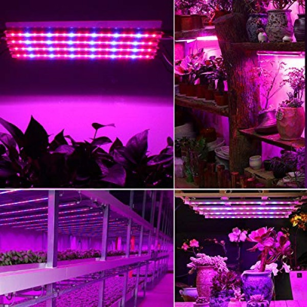 Led Grow Light Strip for Indoor Plants, Full Spectrum Auto On & Of...