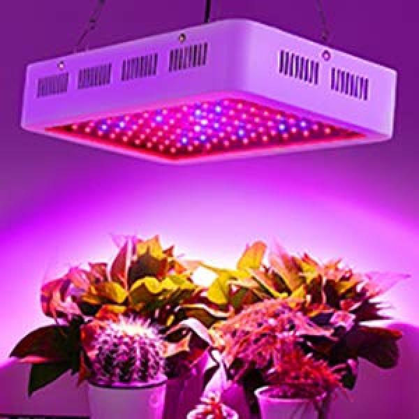 Roleadro Grow Light, 1000W LED Grow Light Full Spectrum Galaxyhydr...