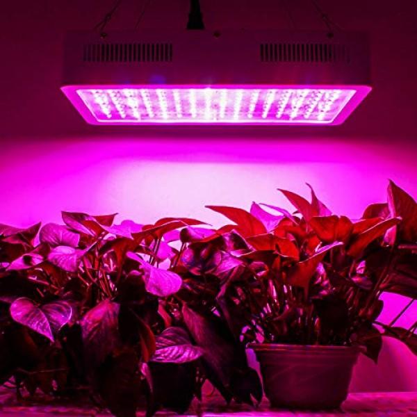 Roleadro LED Grow Light, 1500W Grow Light for Indoor Plants Galaxy...