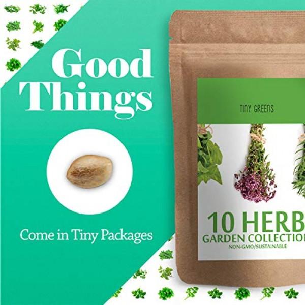 Herb Seeds Vault [10 Variety - 3000 Seeds]- Heirloom Non GMO - Her...