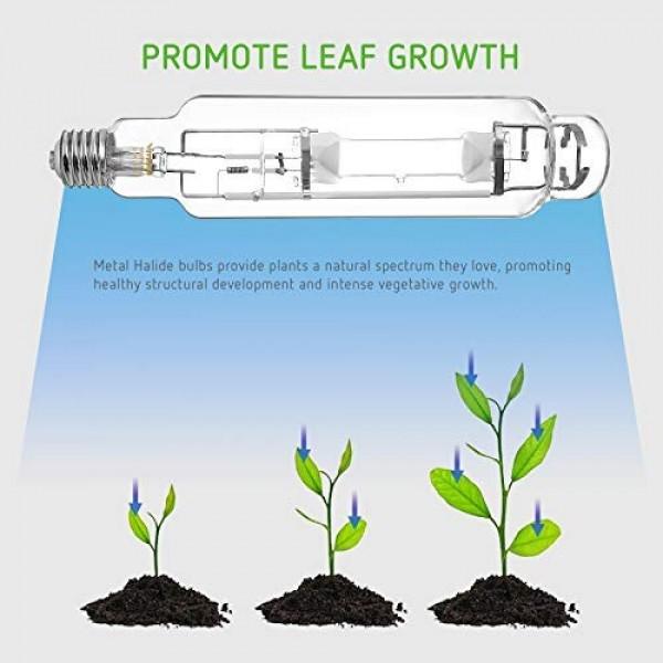 VIVOSUN 1000 Watt Metal Halide MH Grow Light Bulb Lamp - Enhanced ...