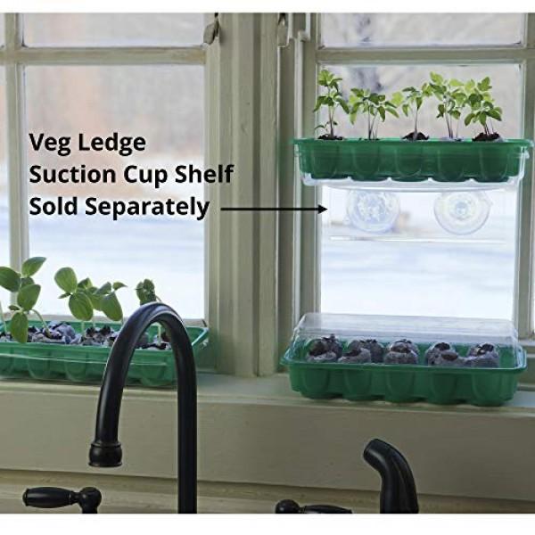 Seed Starting Kit - Complete Supplies - 3 Mini Sturdy Greenhouse T...