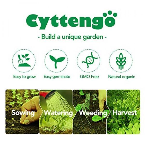 WOHOUS Lettuce Seeds 3500 Heirloom Seeds Vegetable Seeds, 8 Variet...