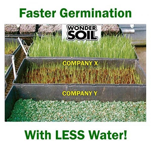 Wonder Soil   Premium Succulent & Cactus Soil Mix   Fast Draining ...